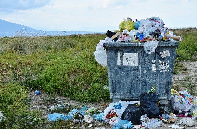 Sortowacz odpadów